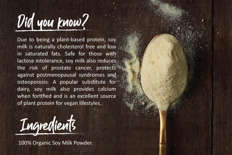 Healthy Snacks Malaysia - Organic Energy Soy Milk Powder (No
