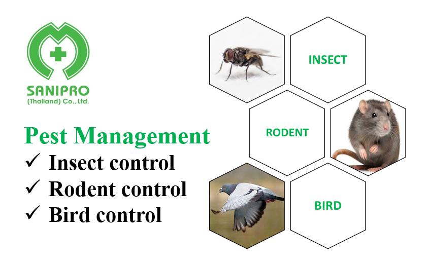 【タイ】昆虫の調査・分析・管理で徹底的に予防&駆除!サニプロのペストコントロール