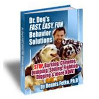 Drdogsbehaviorsolutions