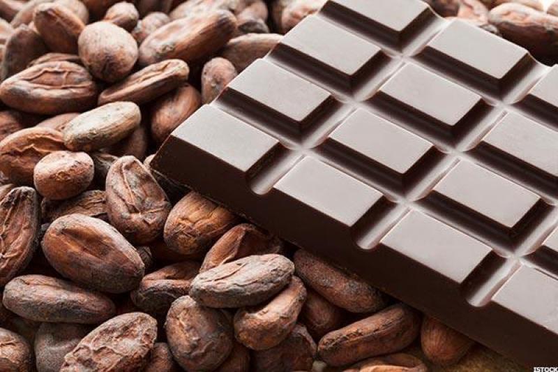 Ilustrasi coklat dan biji kokoa. Foto: Google Images.