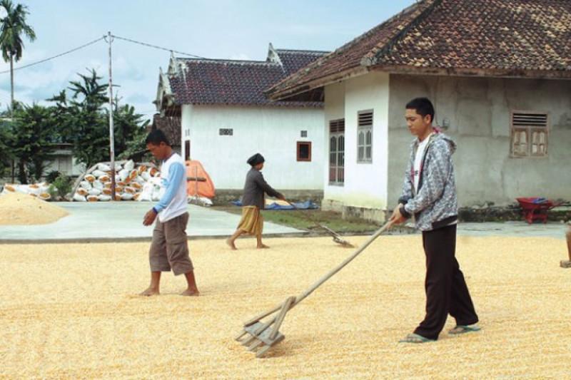 Ilustrasi aktivitas masyarakat Kabupaten Oku Timur. Foto: SINDO News.