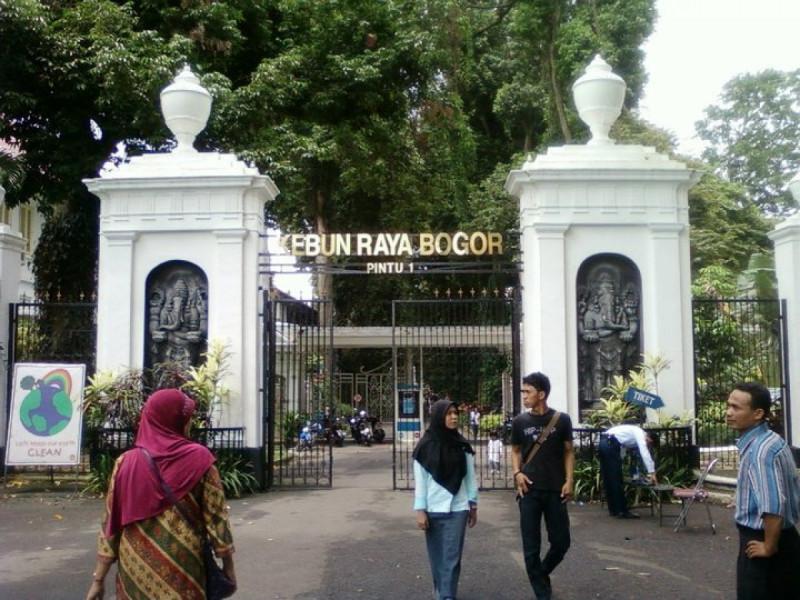 Ilustrasi Kebun Raya Bogor. Foto: MNEWS.