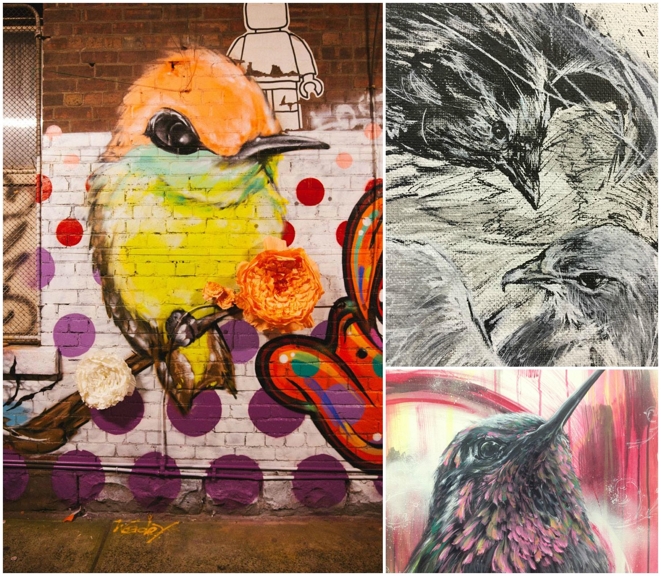 DEM - Bird Collage.jpg