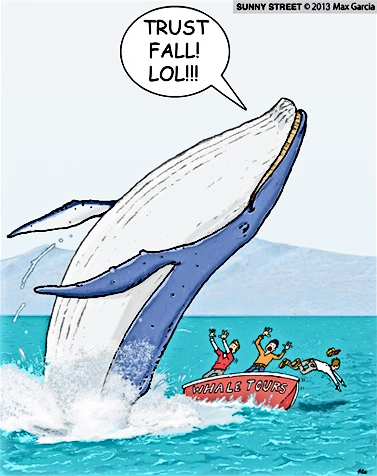Whale Trust Fall.jpg