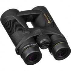 Vanguard 10x42 Spirit XF Binocular (Black)