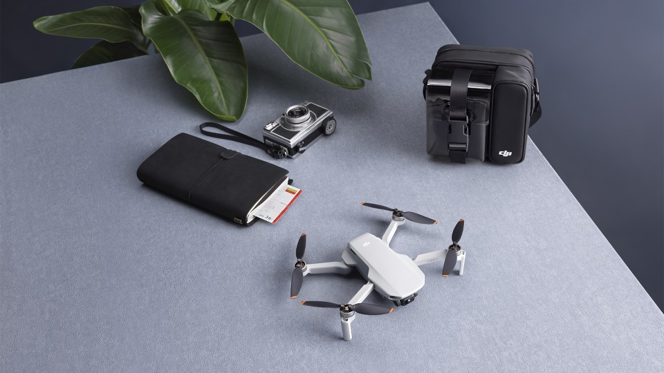 Make Your Moments Fly DJI Mini 2