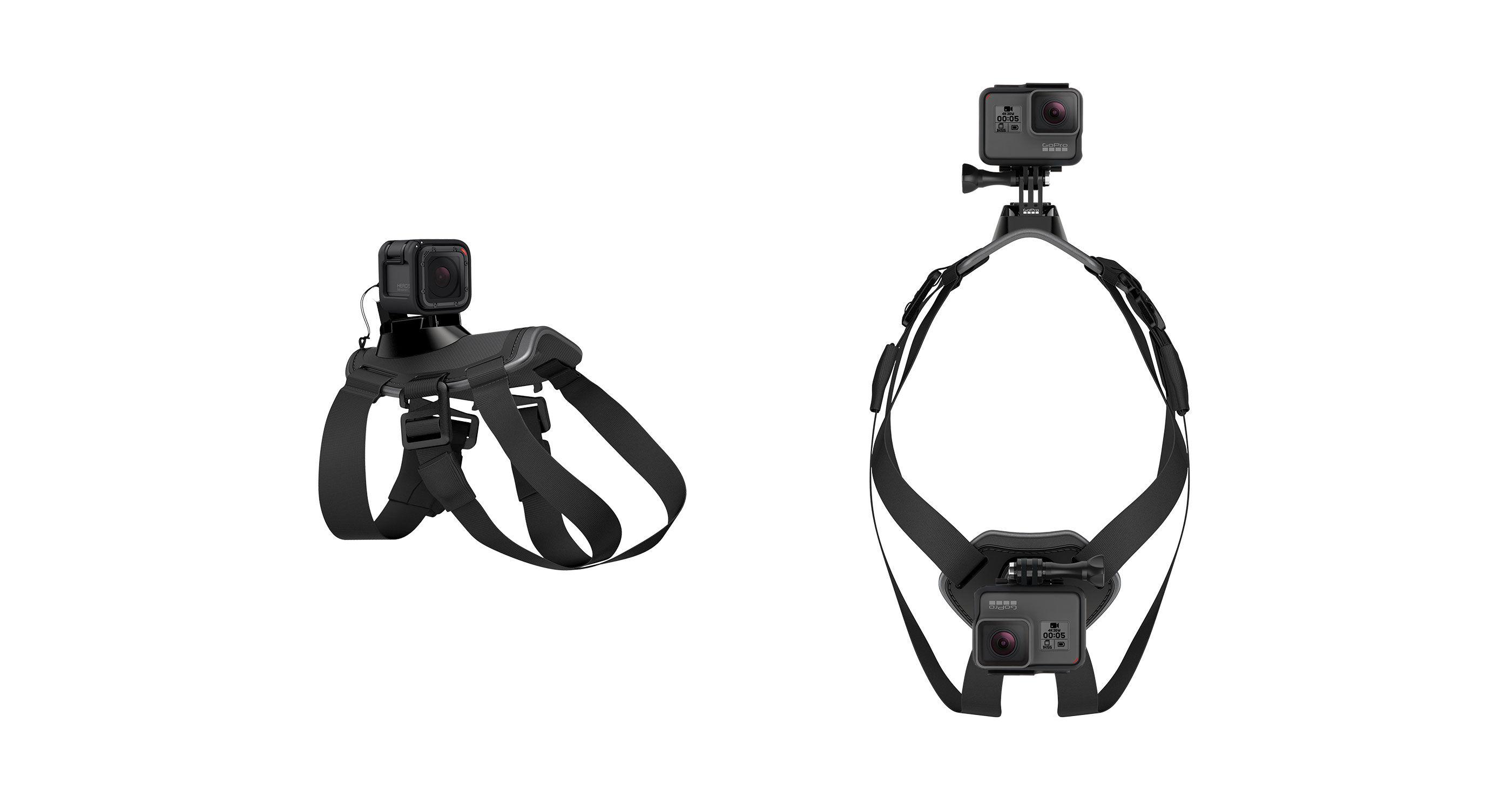 GoPro Fetch - Dog Harness