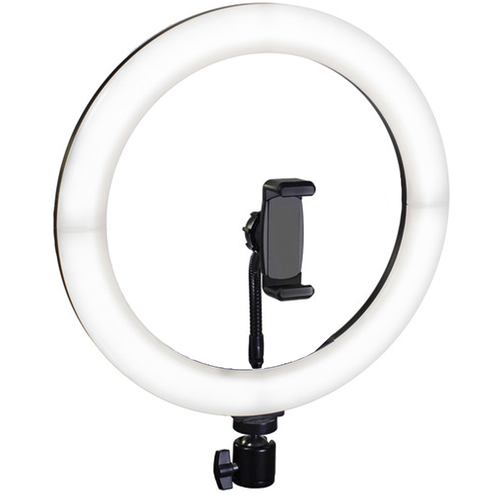 Ring Light 10 Inch With Mini Stand