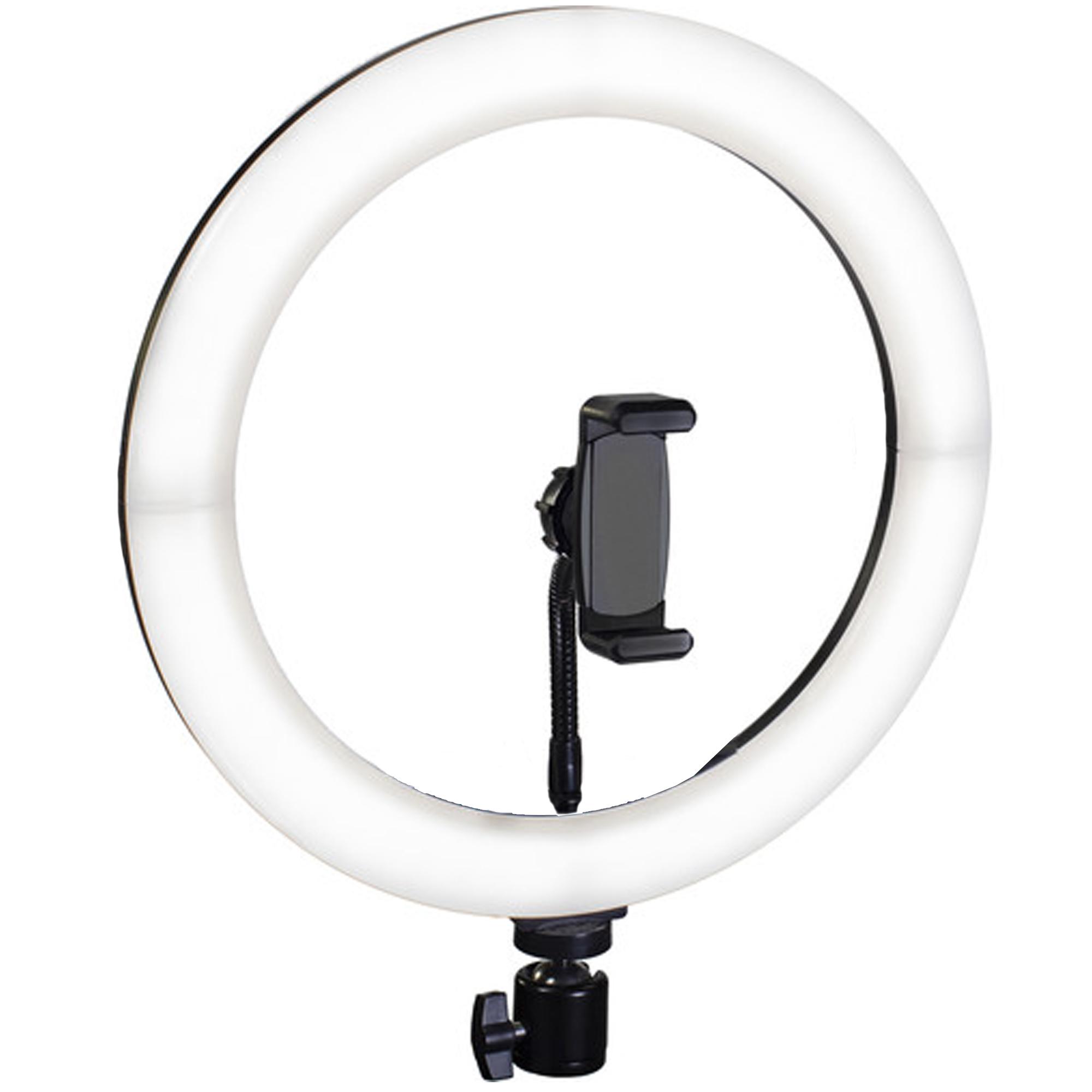 Ring Light 12 Inch ( Light Only )