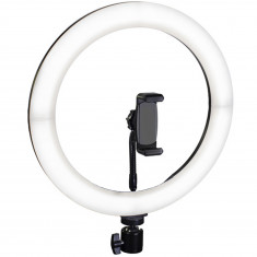 Ring Light 12 Inch With Mini Stand