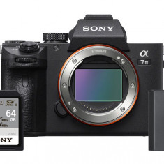 Sony Alpha a7 III Body with NP-FZ100 Battery and Sony 64GB SF-M/T2 SDXC Memory Card
