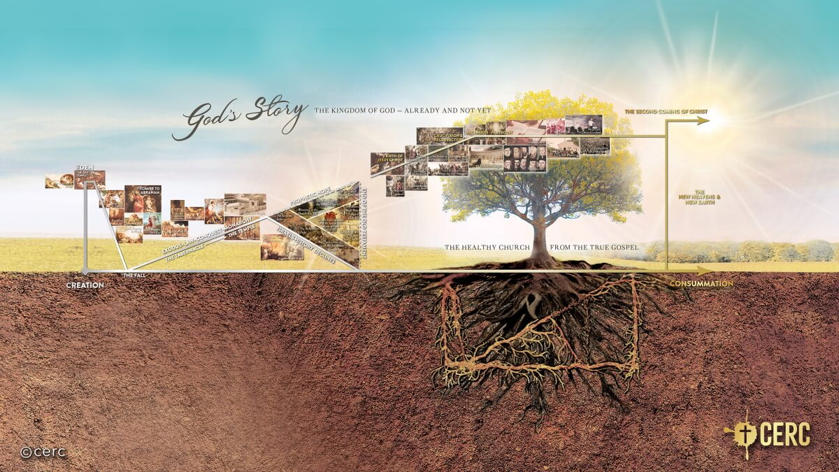 God's Story: New Testament