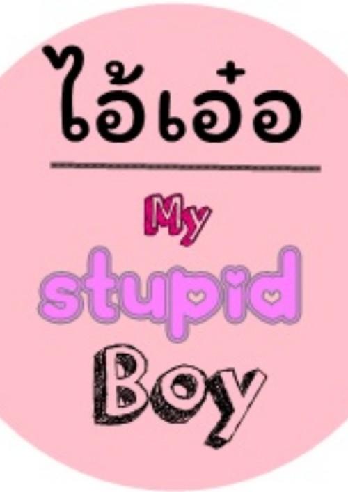 ปกนิยายเรื่อง my stupid boy ไอ้เอ๋อ