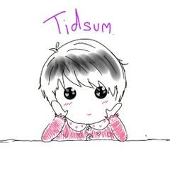 Tidsum-cover
