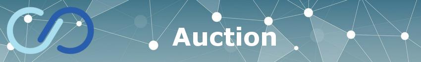 """Infinex Auction"""