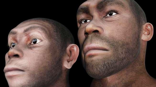 ilustrasi Jenis Manusia Purba - Gambar model wajah manusia purba Homo erectus atau Manusia Jawa (Shutterstock).