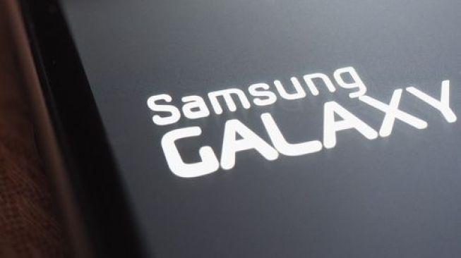 Logo Samsung Galaxy. [Shutterstock]