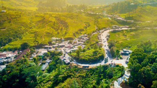 Kawasan atau destinasi wisata Puncak, Bogor, Jawa Barat. (Shutterstock)