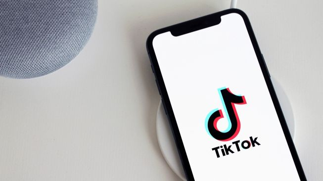 TikTok for Business meluncur di Indonesia. Ilustrasi aplikasi TikTok. (pixabay.com/antonbe/13 images)