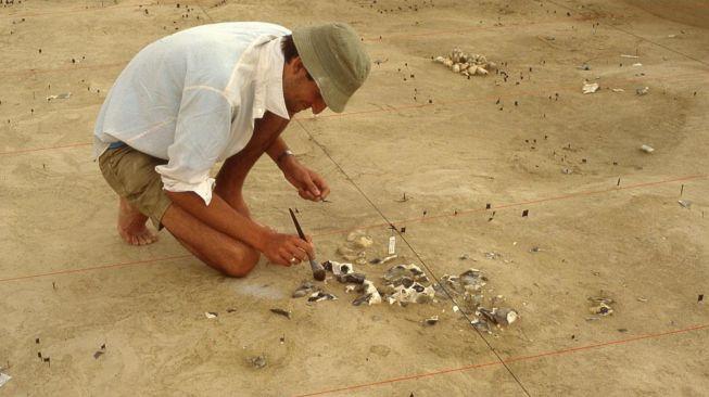 Penemuan alat tulang paling tua. [Eurekalert.org]