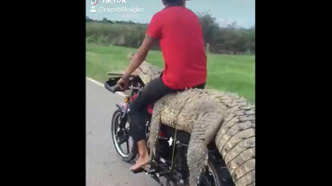 Tangkapan video buaya yang ditaklukan dengan motot. (Twitter/@kementerianunyu)