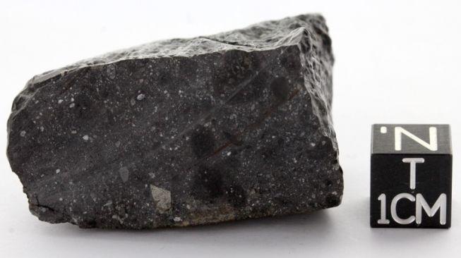 Meteorit NWA 7533, Black Beauty. [University of Copenhagen]