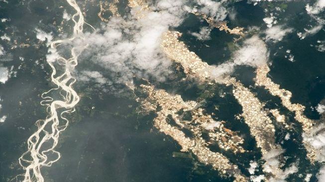 Penampakan sungai emas Amazon. [Earthobservatory.NASA]