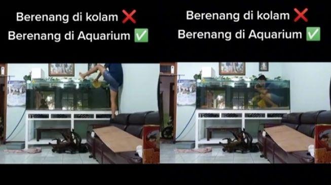 Viral Video Pria Renang di Akuarium Alih-alih Kolam Renang. (TikTok)