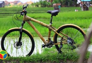 Ewabi Bamboo Bike