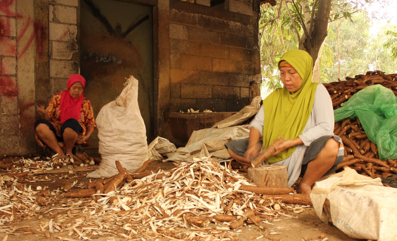 Pekerja mengupas singkong menggunakan pisau tajam. Ini adalah langkah pertama dalam proses produksi keripik singkong.