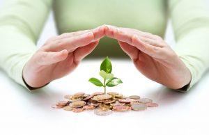 tanaman-tumbuh-dari-setumpuk-uang-koin