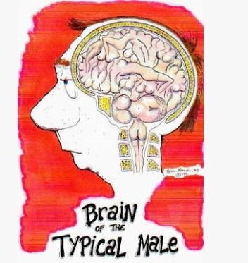 otak-bejat-lelaki