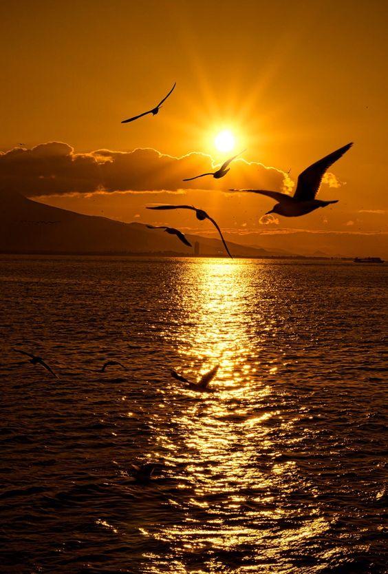 Kata Cinta Untuk Senja Yang Indah Doripos