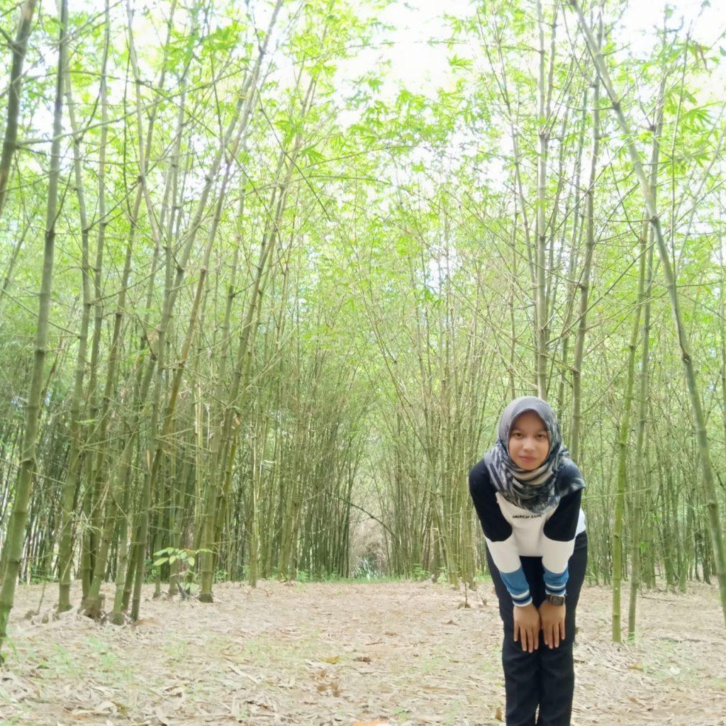 Taman Bambu Malangbong Bogor Yang Cocok Untuk Hunting Foto
