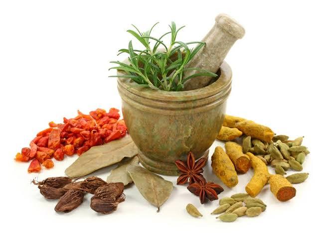 tanaman biofarmaka
