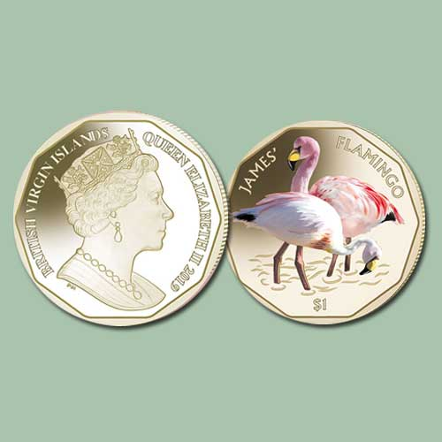 James's-Flamingos-Featured-on-New-Coins