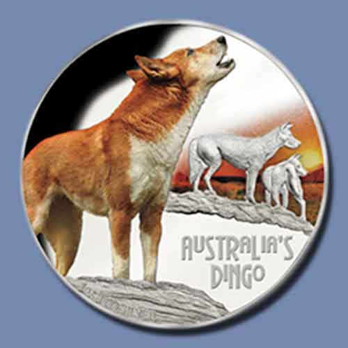 Dangerous-Dingo-Featured-on-Latest-Coin-from-Perth-Mint