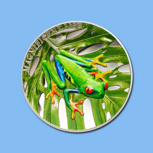 Rain-Forest-Tree-Frog-Featured-on-Coins