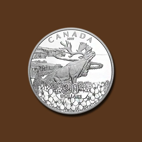 Forget-Me-Not-Silver-Coin-of-Canada
