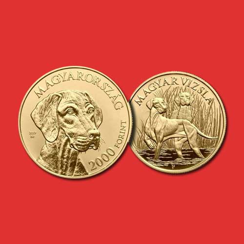 Hunting-Dog-Breed-Vizsla-on-New-Hungarian-Coin