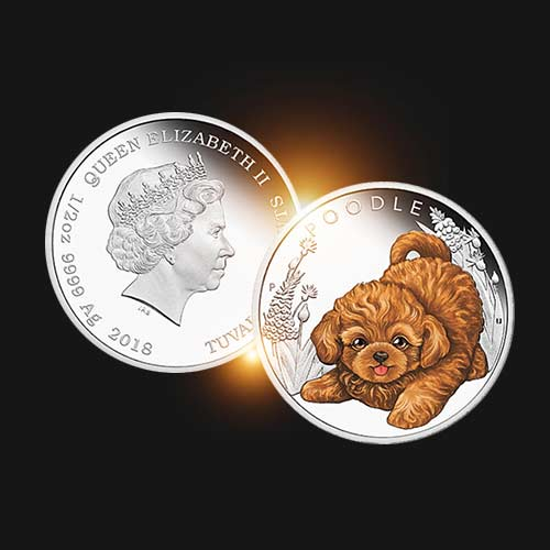 Cute-Puppy-Poodle-on-5-Cent-Silver-Coin
