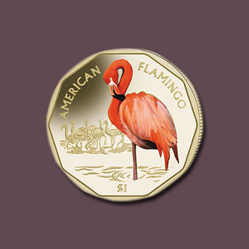 American-Flamingo-Featured-on-Coins