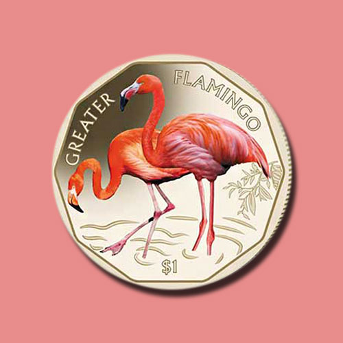 Greater-Flamingos-on-New-Coins