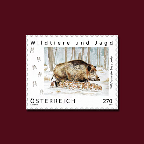 Pigs-Featured-on-Stamps-from-Austria,-Germany-and-Czech-Republic-