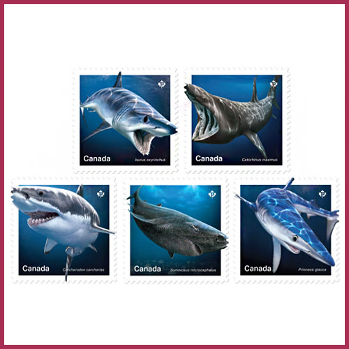 New-Canadian-Stamps-Feature-Sharks