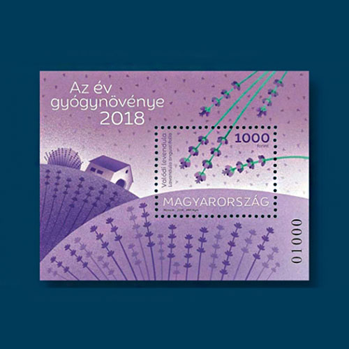 Lavender-Flowers-on-Stamps-from-Hungary