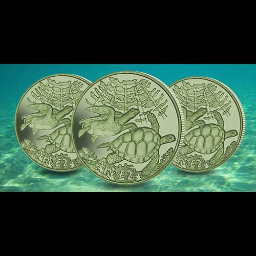 Green-Turtle-on-Titanium-Coins