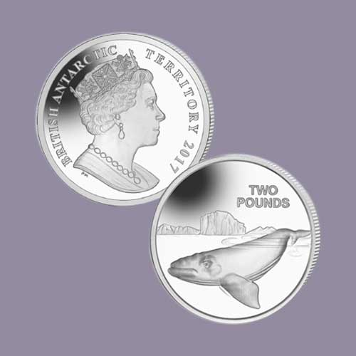 Southern-Right-Whale-on-£2-Coin