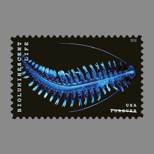 Tomopterid-on-Latest-US-Postage-Stamps