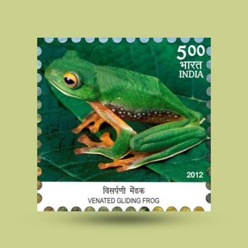 Indian-Philatelist-with-the-Biggest-Collection-of-Frog-Stamps